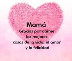 Gracias madre